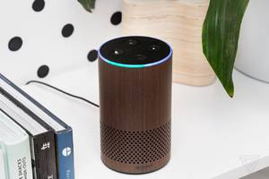 alexa can now connect you with local businesses