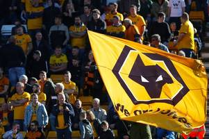 Arsenal and West Ham lead the way - this is where Wolves rank in the Premier League attendance table
