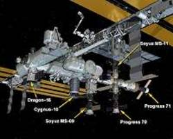 dragon attached to station, returns to earth in january