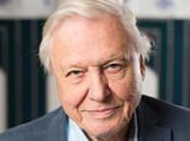 these snakes are charmers: craig brown on attenborough's africa part ii