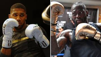 Deontay Wilder: Anthony Joshua's team are 'begging' for fight, says WBC champion