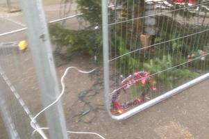 fury as christmas tree is repeatedly attacked by idiot scrooge vandals