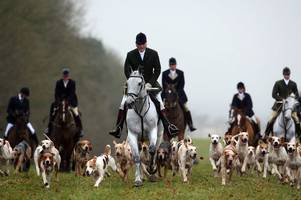 prince charles' favourite hunt the beaufort banned from land over health and safety fears