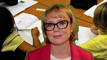 new primary school data for england has been published by the government