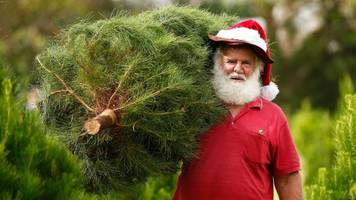 Artificial Christmas Trees Vs. The Real Deal: Is One Really Better?