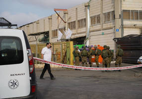why has israel's fabled security services failed to stop terror attacks?