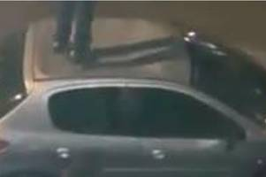 suspect arrested after stoke city fan jumped on car roof in wake of potteries derby disorder