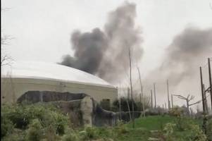 chester zoo evacuated after huge fire breaks out at popular attraction