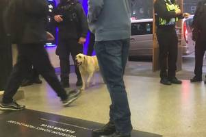 noticed police officers at woking train station this week? here's why