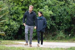 Prince Harry likely to snub Royal Family Christmas pheasant shoot because of Meghan Markle