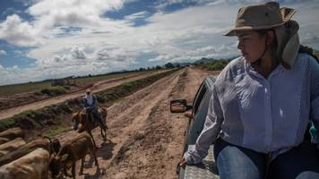 the searchers: mexican women who look for the dead