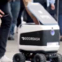 Kiwi delivery robot goes up in flames
