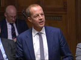 nick boles and anna soubry vow to bring down may's government if she pursues no deal brexit