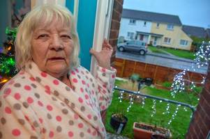 heartbroken pensioner slams despicable thieves who stole beloved pet cat's ashes