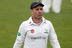 mark wallace appointed new glamorgan director of cricket