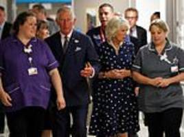 prince charles and camilla back the daily mail's volunteering campaign