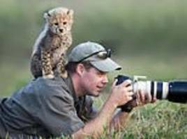 the photobombing wild animals whose curiosity created the perfect shots