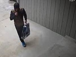 neighbours chase porch pirate up and down street after spotting him stealing package from house