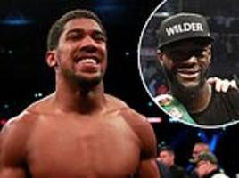 joshua, wilder, canelo... the 10 fights we want to see in 2019