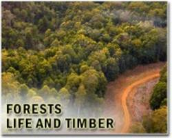 nine forest vital signs reveal the impacts of the climate