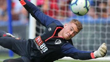 aaron ramsdale: afc wimbledon sign bournemouth goalkeeper on loan