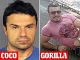 ocean's 11 style gang allegedly used acrobats to steal $10million from jewelry stores