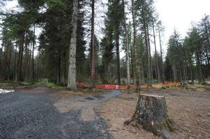 West Lothian country park to transform into Winter Wonderland next Christmas