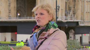 anna soubry: 50 mps write to met police chief over 'nazi' abuse