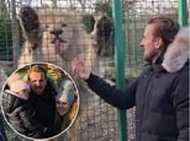 harry kane hand feeds lion some raw meat on family day out at paradise wildlife park