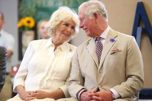 prince charles and camilla divorce rumours draws response from clarence house