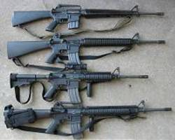 'come together': us dems introduce gun background check bill