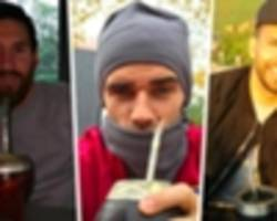 what is mate tea? the drink messi, suarez, griezmann & england footballers love
