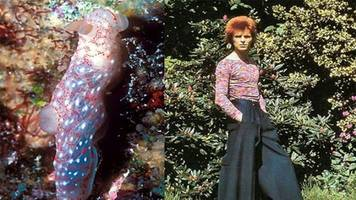 This Cool Blog Compares David Bowie's Style to Colorful Sea Slugs