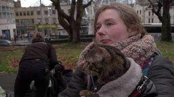 Volunteer vets help pets of Bristol homeless people