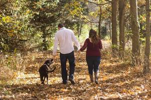 why i'm scared to walk my dog in cornwall | opinion