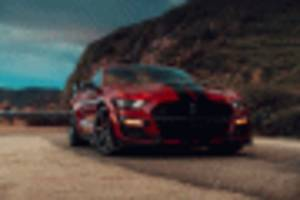 2020 Ford Mustang Shelby GT500 arrives with venom: Hoodpins come standard