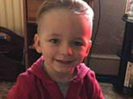 boy, three, was 'deliberately crushed to death in rear footwell of audi by his mother's boyfriend'