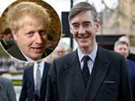 jacob rees-mogg threw champagne party to toast theresa may's commons defeat with fellow brexiteers