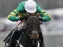 buveur d'air may head straight to cheltenham in bid for third successive champion hurdle win