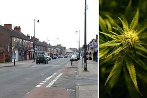 frodingham road cannabis factory was managed by illegal immigrant 'to pay off people trafficking debt'