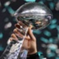 NFL: NZME resident NFL tragics break down the Conference Championships