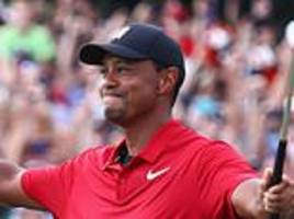 one year on from his return, and this year tiger's season is all about winning