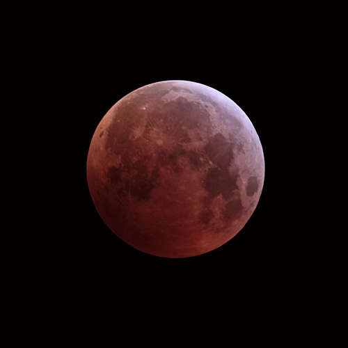 blood moon 2019: skywatchers enjoy cosmic spectacle during lunar eclipse