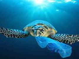 founders of a new $1.5bn ocean waste alliance are among biggest investors in new plastic