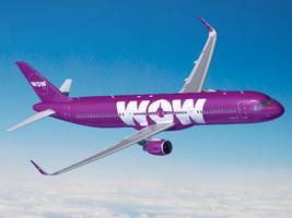 wow air ceo reveals what went wrong with his airline after a tumultuous year where the company had to lay off 111 workers and dump half of its planes