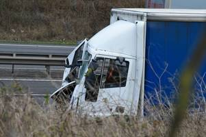 police appeal for motorists who witnessed fatal m1 crash involving pedestrian to get in touch