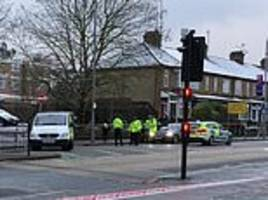 female pedestrian, 21, is mowed down and killed by police car