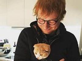 ed sheeran is set to overtake adele as britain's most successful singer