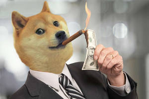 dogecoin price risks dropping below $0.002 as bears remain in control