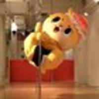 rogue pole-dancing otter mascot chiitan causes trouble for japanese city of susaki